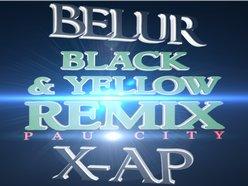 Image for Belur