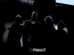 Image for Opinaut