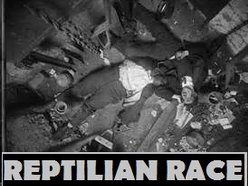 Image for Reptilian Race
