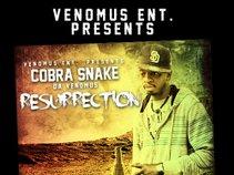 Cobra Snake Da Venomus