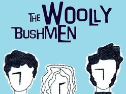 Image for The Woolly Bushmen