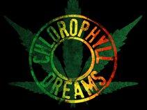 Chlorophyll Dreams
