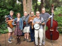 Tangletown String Band