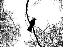 RavenTales