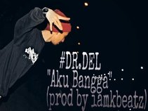 Dr.Del