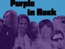 Purple in Rock
