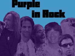 Image for Purple in Rock