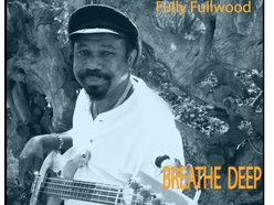 Image for Fully Fullwood