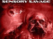 SENSORY SAVAGE