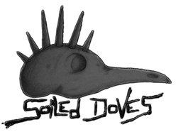 Soiled Doves