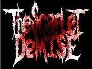 The Scarlet Demise