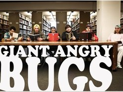 Image for Giant Angry Bugs
