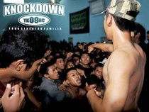 knockdown YKHC