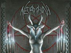 Image for Necroshine