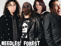 Needles' Forest