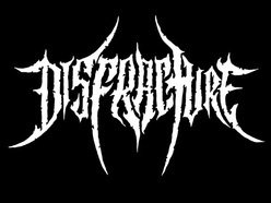 Image for Disfracture