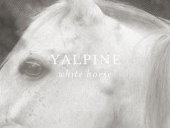 Image for YalPine