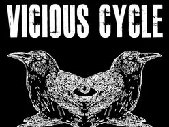 Image for Vicious Cycle
