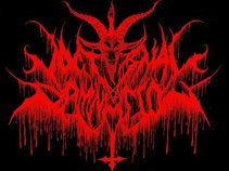 Nocturnal Damnation