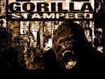 Gorilla Stampeed