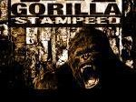 Image for Gorilla Stampeed