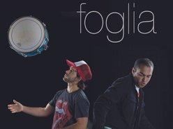 Image for foglia