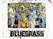 Trail Dogs Bluegrass