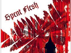 Image for spent flesh