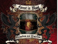 Image for FOREST IN BLOOD OFFICIAL