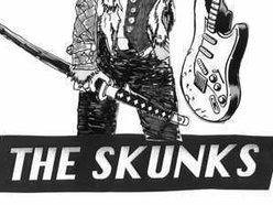 Image for THE SKUNKS