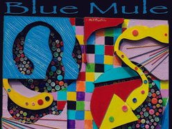 Image for Blue Mule
