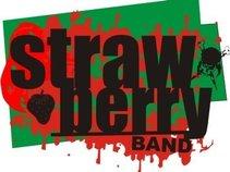 Strawberry Band Sumedang