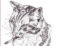 Cancer Cat