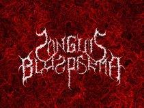 Sanguis Blasphema