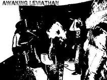 Awaking Leviathan