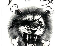 Image for Savage Fury