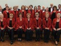 The Tudor Choristers