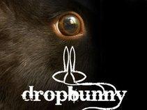 dropbunny