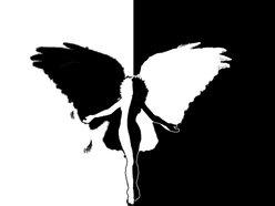 Image for Analog Soul