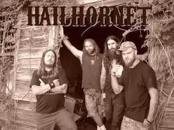 Image for Hail! Hornet