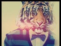 King Dj Tiger