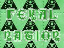 Feral Nation