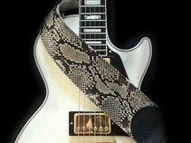 Slip of the Snake - Whitesnake Tribute