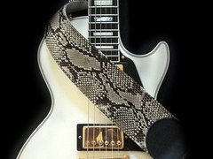 Image for Slip of the Snake - Whitesnake Tribute