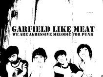 Garfield Like Meat