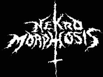 Nekro Morphosis