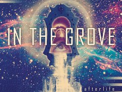 Image for In The Grove