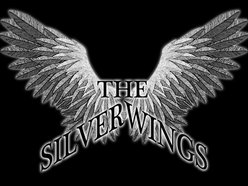 Image for The Silverwings