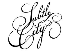 Image for Subtle City