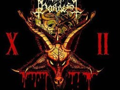 Burial Hordes official